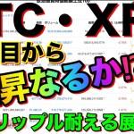 【仮想通貨BTC・XRP】ビットコイン押し目をつけ上昇なるか⁉︎リップルは耐える展開⁉︎今後の価格予想!