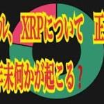 【仮想通貨】リップル最新情報‼️リップル、 XRPについて 正念場の XRP年末何かが起こる❓