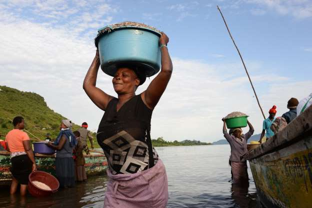 Kenya lifts China fish ban to boost supply in the country