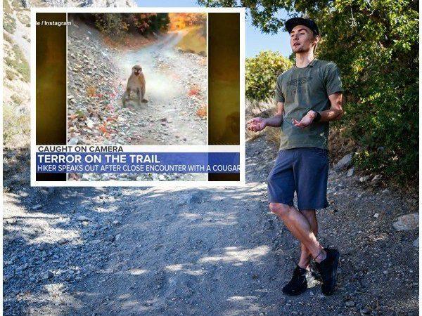 Cougar Stalks, Charges Utah Hiker for 6 Minutes