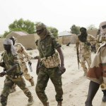 Boko Haram fighters 'kill 9 in village raids'