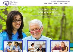 Blue Rosey Homecare (web design)