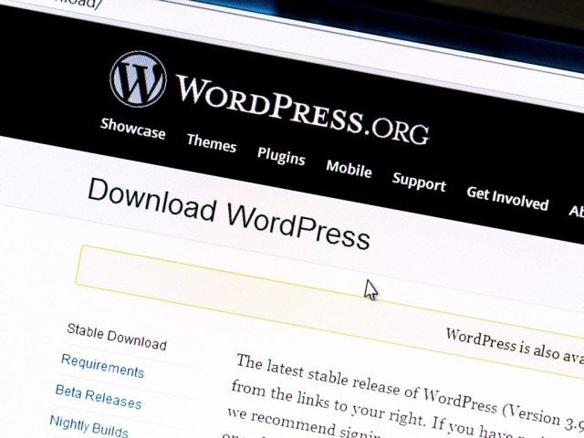 Self-hosted WordPress development