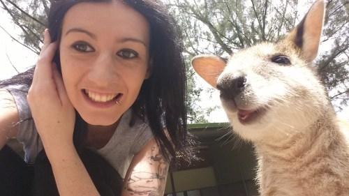 kangaroo1 (17)