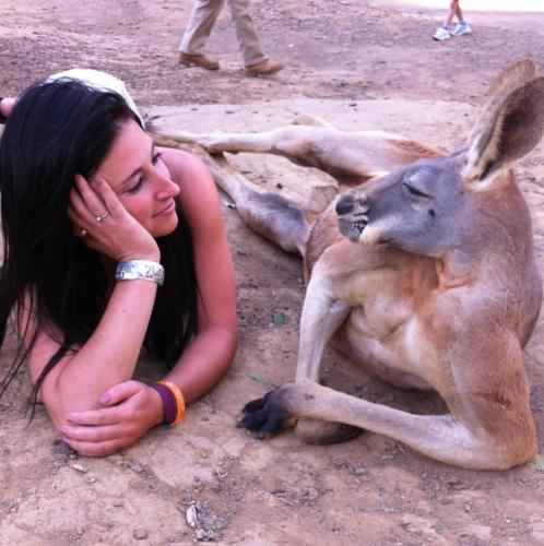 kangaroo1 (3)