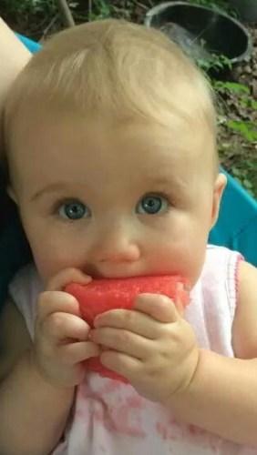 watermelon (14)