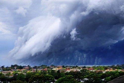 1113shelf_cloud_sydney8