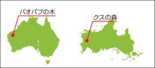 1218yamaguchi_australia8