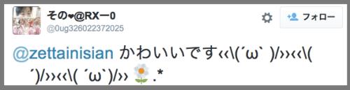 cat_owl_com2