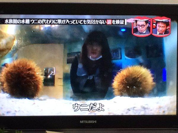 uni_kuri (2)