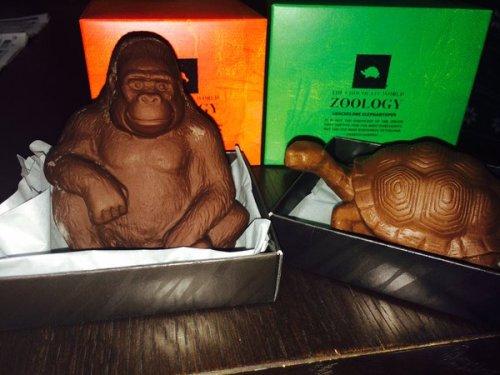 gorillachoko5