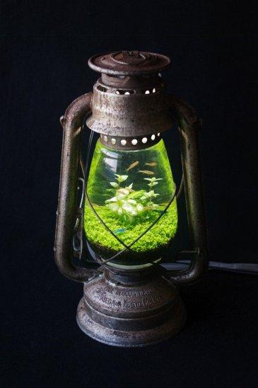 lamp_watertank