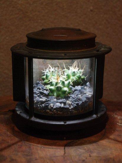 lamp_watertank12