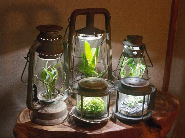 lamp_watertank14