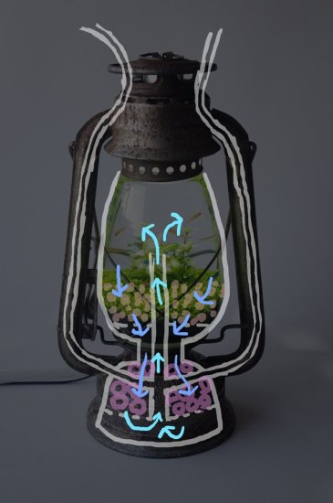 lamp_watertank15