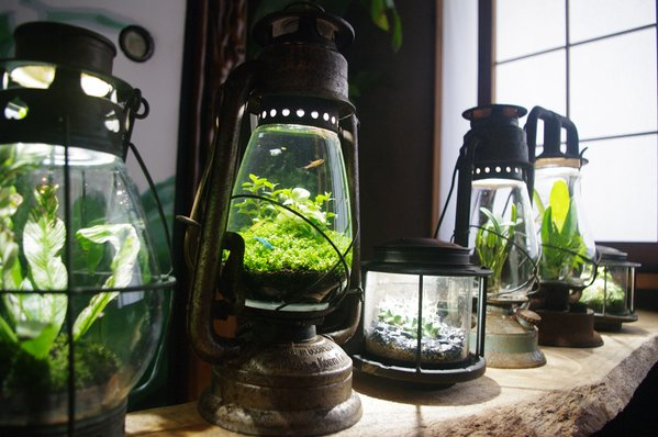 lamp_watertank4