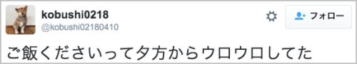 gohankudasai_inu19