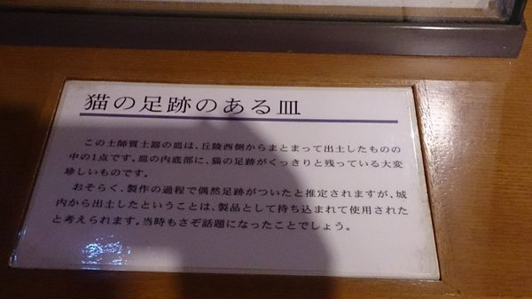 nekonoashiato_doki2