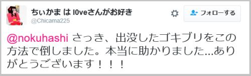 gokiburi_gekitai (7)