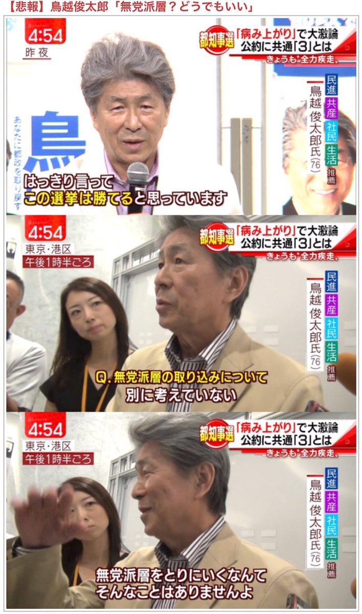 hashimoto_torigoe (1)