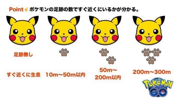 pokemon_japan (10)