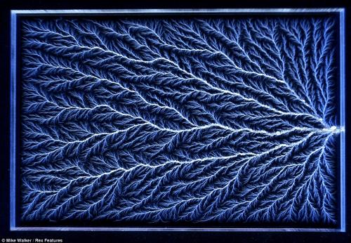 rakurai_lichtenberg (4)