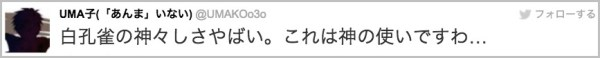 shirokujaku_kaminotukai1