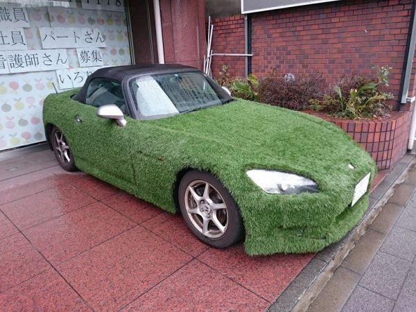 grasscar-4