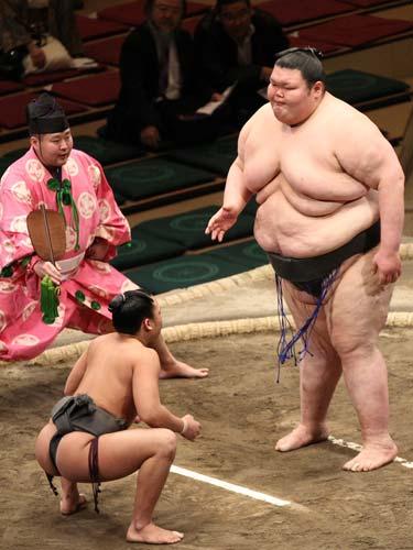 sumou_bigger-5