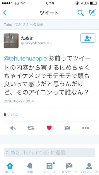 tehu_dis-1
