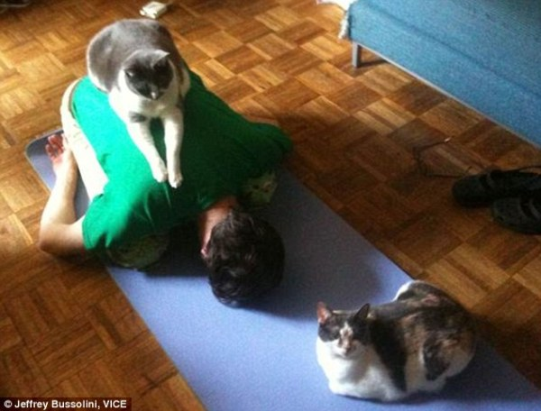 yoga_animal (15)