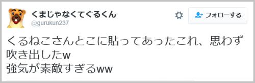 cat_jotokai-5