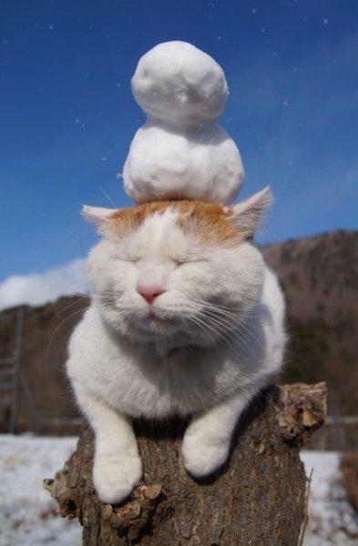 snowsculpture (4)