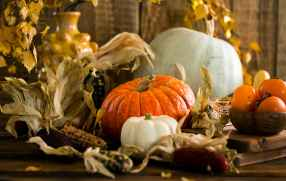 Casino Hours Entertainment and Thanksgiving Specials In A Covid World