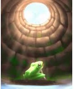 Hindi Kahani - Frog in the well