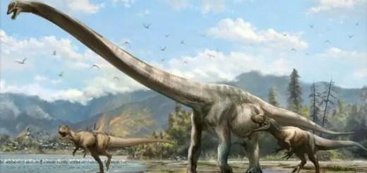 dinosaur kya khate the