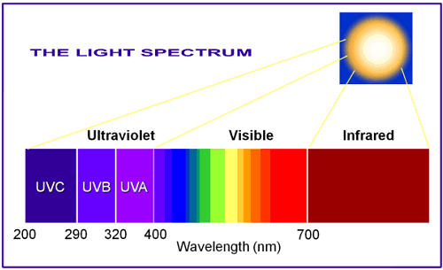 अल्ट्रा वायलेट रेडिएशन, Ultraviolet Radiation ke effects hindi, अल्ट्रा वायलेट विकिरण, What is Ultraviolet Radiation hindi, sunburn hindi, अल्ट्रावायलेट किरणों का दुष्प्रभाव, Effects of ultraviolet on Humans hindi, अल्ट्रावायलेट किरणों के जीवो पर प्रभाव, Effects of Ultraviolet radiation on animals, अल्ट्रावायलेट किरणों का पौधों पर प्रभाव, Effects of Ultraviolet radiation on plants