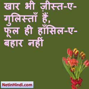 Bahaar status photos, Bahaar shayari status, Bahaar shayari pics, Bahaar shayari images खार भी ज़ीस्त-ए-गुलिस्ताँ हैं,  फूल ही हाँसिल-ए-बहार नहीं !! Bi