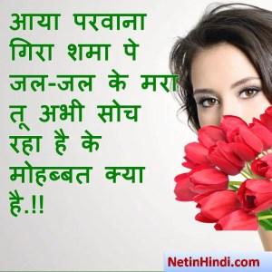 love shayari in hindi आया परवाना गिरा शमा पे जल-जल के मरा तू अभी सोच रहा है के मोहब्बत क्या है.!!