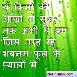 Shabnam shayari dp, Shabnam whatsapp status, Shabnam whatsapp status in hindi, whatsapp status Shabnam Par यूँ किसी की आँखों में सुबह तक अभी थे हम  जिस तरह रहे शबनम फूल के प्यालों मे  ~बशीर_बद्र