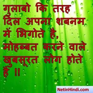 Shabnam status, Shabnam status picture, Shabnam status images, Shabnam status pics, Shabnam status photos गुलाबो कि तरह दिल अपना शबनम में भिगोते है,  मोहब्बत करने वाले खुबसूरत लोग होते है !! -बशीर बद्र