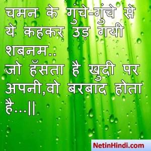 hindi Shabnam status, status in hindi for Shabnam चमन के गुंचे-गुंचे से ये कहकर उड़ गयी शबनम..  जो हँसता है खुदी पर अपनी,वो बरबाद होता है...  