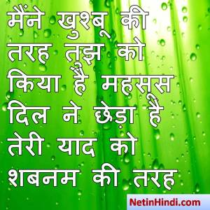 hindi Shabnam status, status in hindi for Shabnam मैंने खुश्बू की तरह तुझ को किया है महसूस  दिल ने छेड़ा है तेरी याद को शबनम की तरह