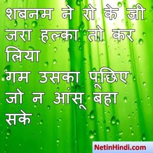 hindi Shabnam status, status in hindi for Shabnam शबनम ने रो के जी जरा हल्का तो कर लिया  गम उसका पूछिए जो न आंसू बहा सके  ~ सलाम संदेलबी