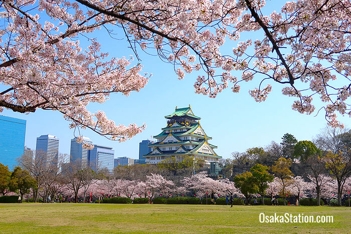Where To Stay In Osaka The Best Hotel Locations Osaka