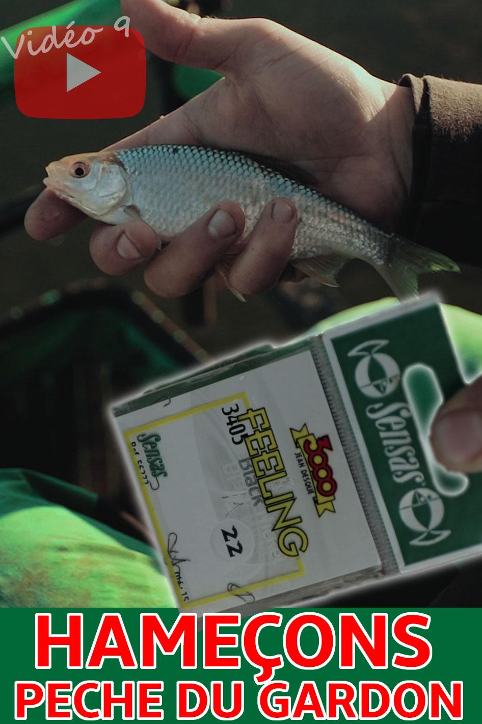 choisir ses hameçons pêche au coup gardon étang canal rivière