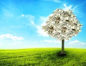 Money tree growing in the middle of green meadow