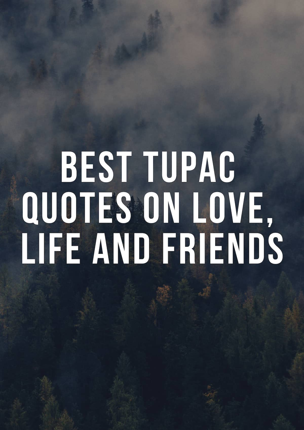 2pac Quotes About Friends : quotes, about, friends, Tiesiogiai, Paketas, Progresas, Tupac, Quotes, About, Yenanchen.com