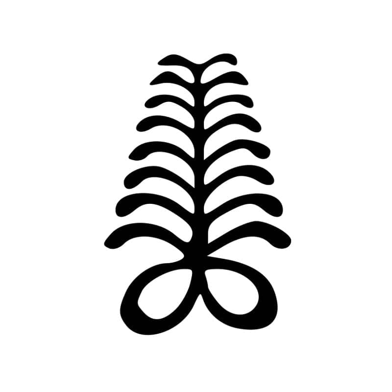 List of Adinkra Symbols and Their Meaning in Ghana YEN.COM.GH