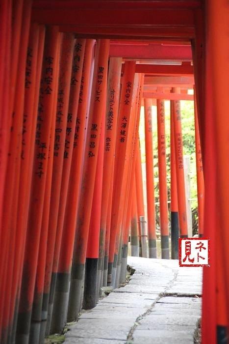 yanesen_nedu (09)-s.JPG